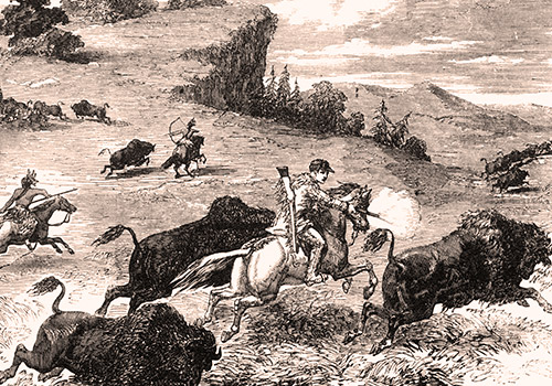 Thunder Ridge Bison Co., The History Of Bison, Ontario